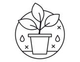 Dibujo de Cultivo Ecológico para colorear