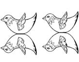 Dibujo de Dos pájaros para colorear