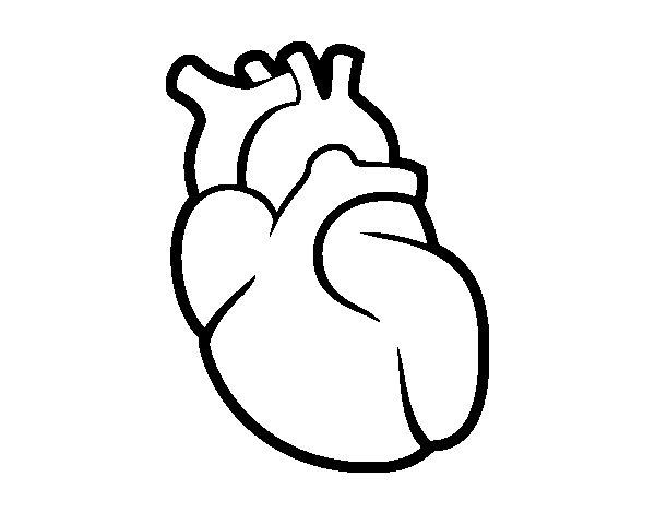 Worksheet. Dibujo de El corazn para Colorear  Dibujosnet