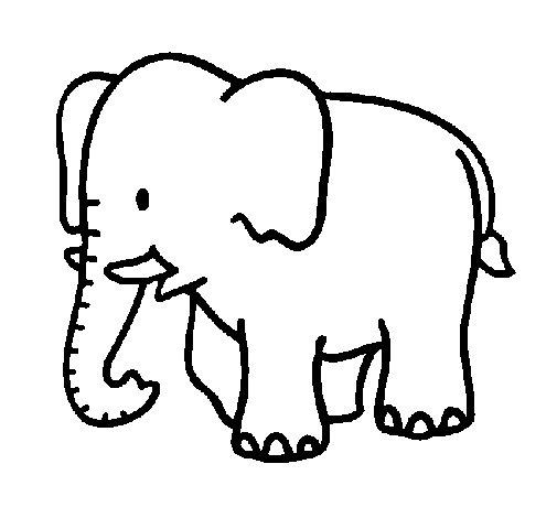 Dibujo de Elefante bebe para Colorear