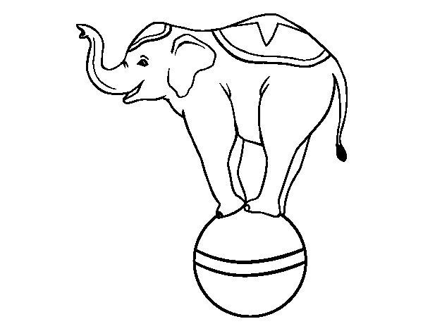 Dibujo Elefante Para Colorear E Imprimir: Dibujo De Elefante Equilibrista Para Colorear