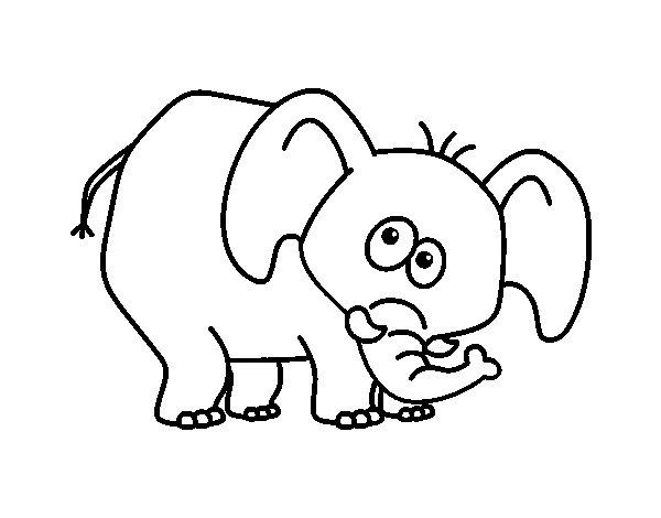 Dibujo de Elefante vergonzoso para Colorear