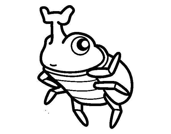 Dibujos De Insectos Para Colorear: Dibujo De Escarabajo Rinoceronte Para Colorear