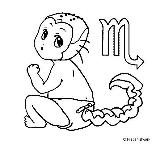 Dibujo de Escorpión para Colorear