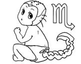 Dibujos de Escorpiones para Colorear  Dibujosnet