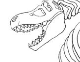 Dibujo de Esqueleto tiranosaurio rex para colorear