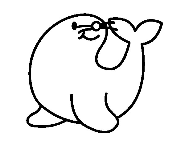 Dibujo de Foca alegre para Colorear