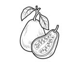 Dibujo de Fruta exótica guayaba para colorear