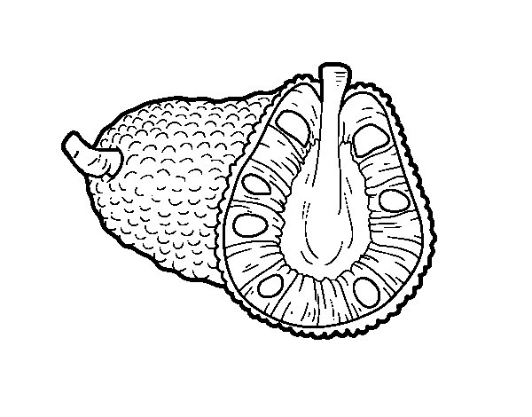 Dibujo de Fruta extica la yaca para Colorear  Dibujosnet