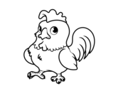 Dibujo de Gallo joven para colorear