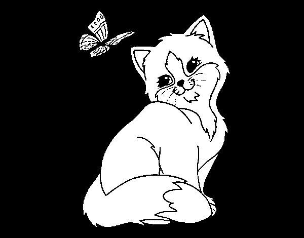 Dibujo de Gatito y mariposa para Colorear