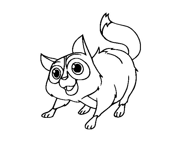 Dibujo de Gato callejero para Colorear
