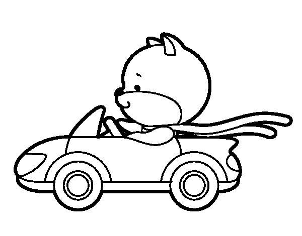 Dibujo de Gato conduciendo para Colorear
