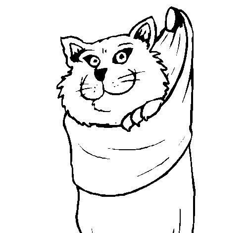 Dibujo de Gato dentro de una calcetín para Colorear