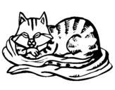 Dibujo de Gato en su cama para colorear