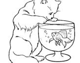Dibujo de Gato mirando al pez para colorear