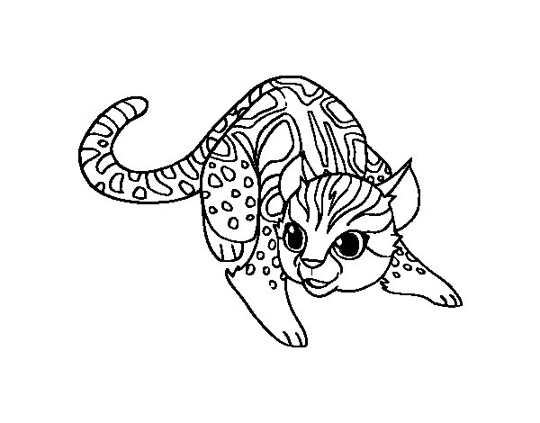 Dibujo de Gato salvaje africano para Colorear  Dibujosnet