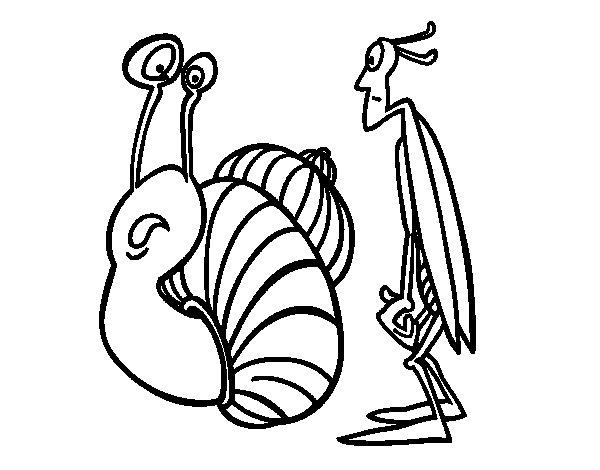 Dibujo de Grillo y Caracol para Colorear