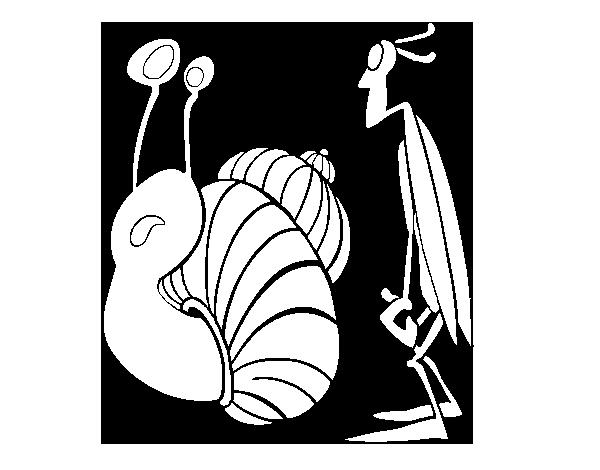 Dibujo de Grillo y Caracol para Colorear  Dibujosnet