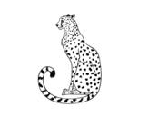 Dibujo de Guepardo sentado para colorear