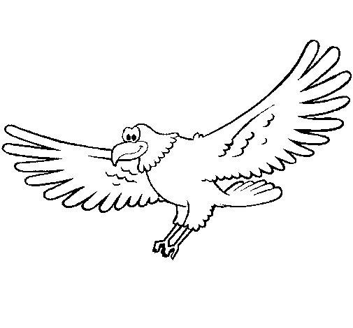 Dibujo de Halcón para Colorear
