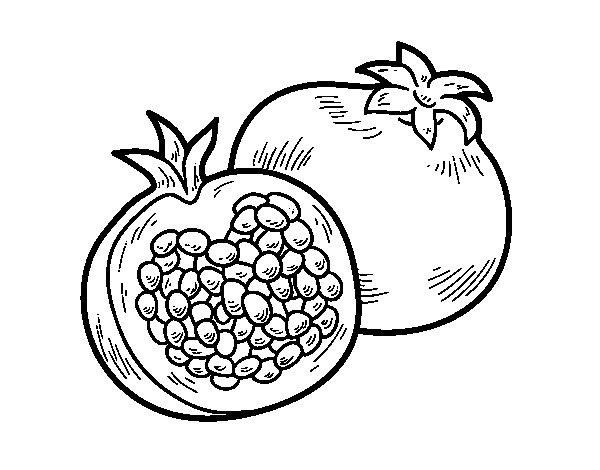 Dibujo de La granada para Colorear  Dibujosnet