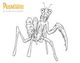 Dibujo de La Mantis Religiosa Gigante