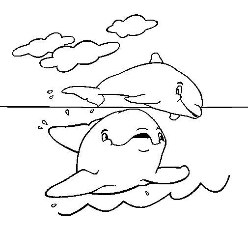 Dibujo de Madre e hijo delfn para Colorear  Dibujosnet