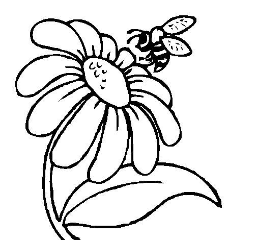 Worksheet. Dibujo de Margarita con abeja para Colorear  Dibujosnet