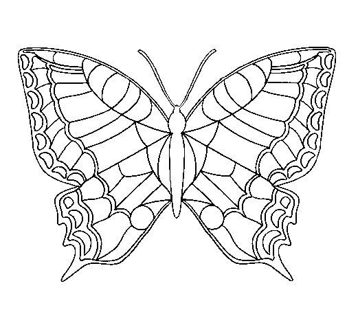 Dibujo de Mariposa 16 para Colorear