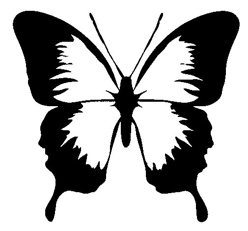 Dibujo de Mariposa con alas negras para Colorear