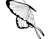 Dibujo de Mariposa con grandes alas para colorear