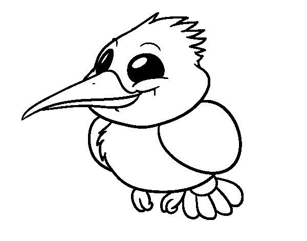 Dibujo de Martín pescador para Colorear