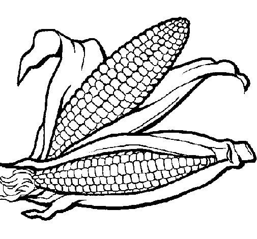 Dibujo de Mazorca de maíz para Colorear