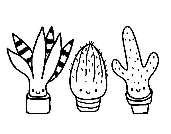Cactus Coloring Pages - Democraciaejustica
