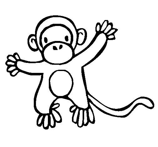Dibujo de Mono 2a para Colorear  Dibujosnet