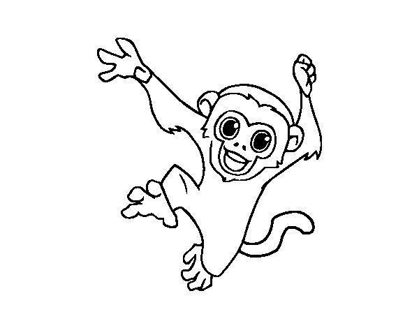 Monitos Para Colorear: Dibujo De Mono Capuchino Bebé Para Colorear