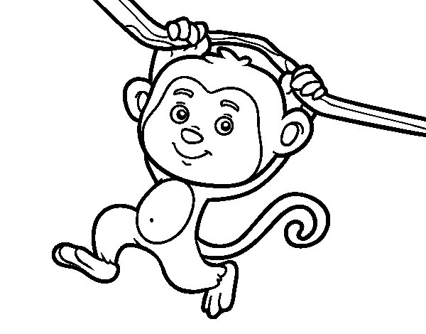 Dibujo de Mono colgado de una rama para Colorear  Dibujosnet