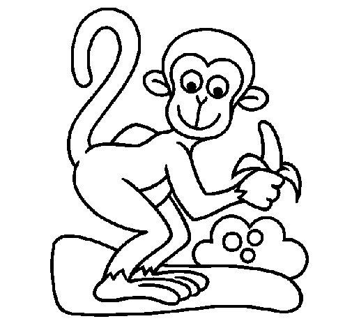 Dibujo de Mono para Colorear  Dibujosnet