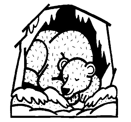 Dibujo de Oso invernando para Colorear