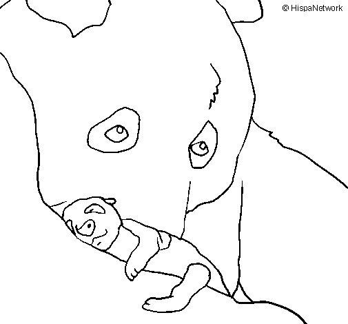 Dibujo de Oso panda con su cria para Colorear  Dibujosnet