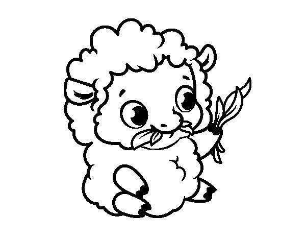 Dibujo de Oveja bebé para Colorear