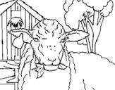 Dibujo de Oveja comiendo una hoja para colorear