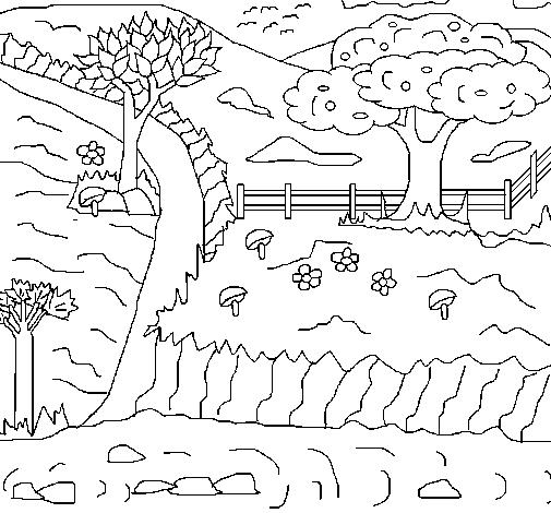 Dibujo de Paisaje rural para Colorear  Dibujosnet