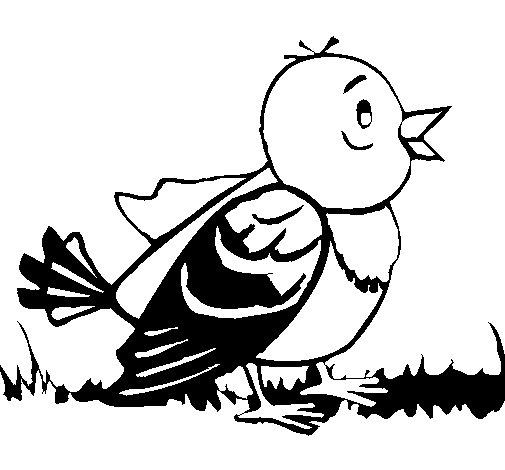 Dibujo de Pajarito para Colorear