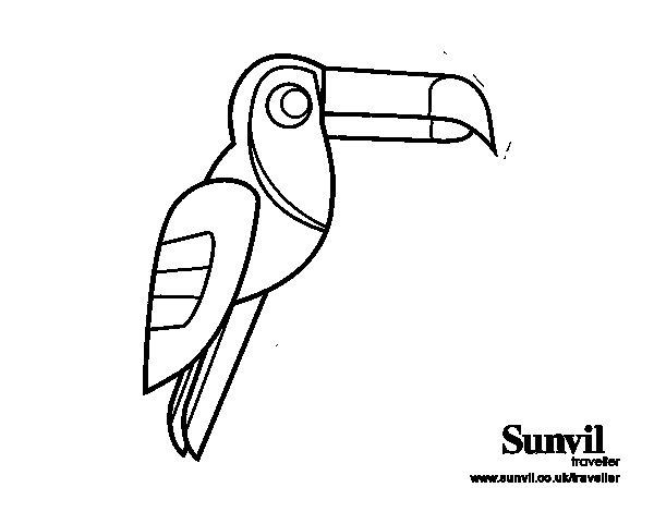 Dibujo de Pájaro Tucán para Colorear
