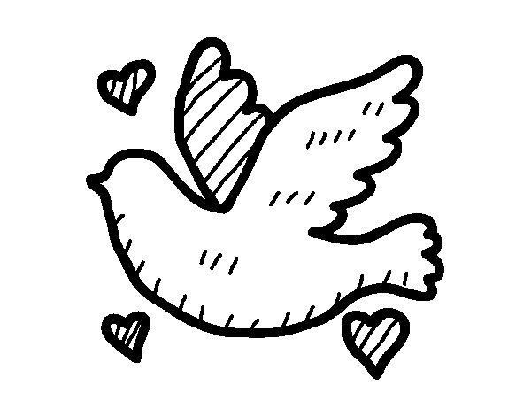 Dibujo de Paloma del amor para Colorear