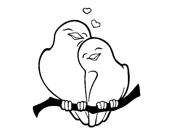 Dibujo de Palomitas enamorados para Colorear