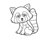 Dibujo de Panda rojo para colorear