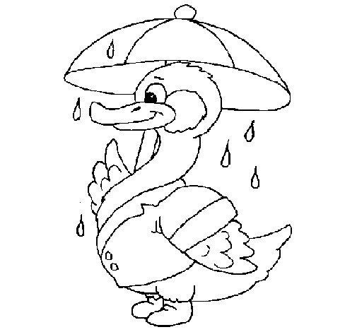 Dibujo de Pato bajo la lluvia para Colorear